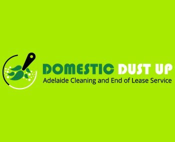Domestic Dust Up